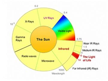 รังสี ฟาร์ อินฟราเรด (Far Infrared Ray) หรือ FIR