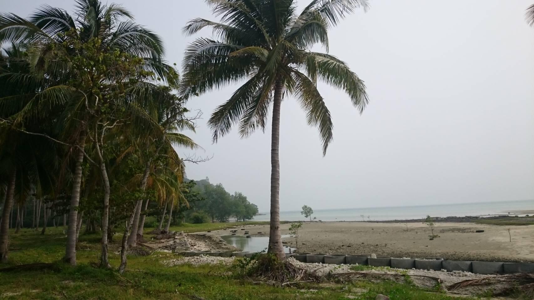 ขายที่ดินติดหาดท้องกรูท เกาะสมุย 2