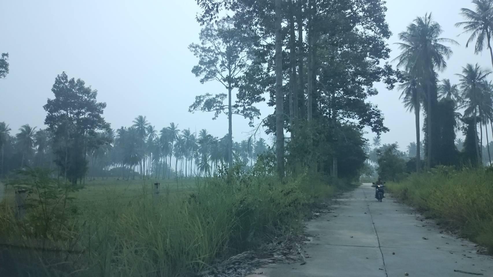 ขายที่ดินติดหาดท้องกรูท เกาะสมุย 7