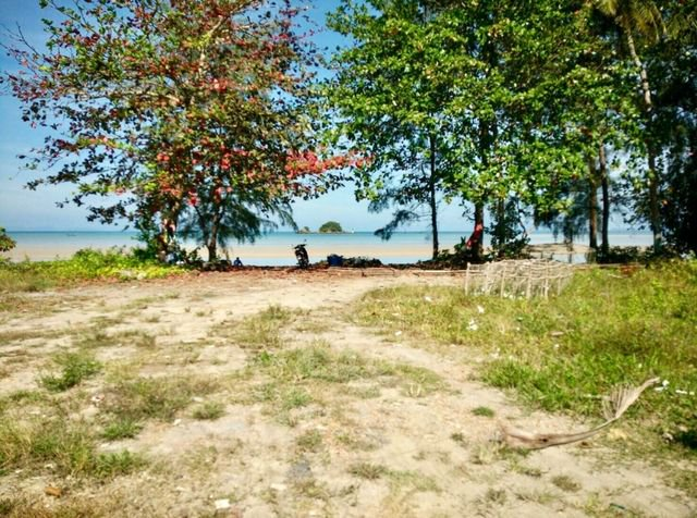 ขายที่ดินติดหาดสวยที่สุด 6 ไร่ เกาะลันตา เพื่อทำรีสอร์ท 2