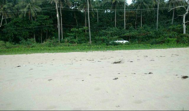 ขาย ที่ดินติดชายหาด สวยมาก เกาะลันตา เพื่อทำรีสอร์ท บ้านพัก 8